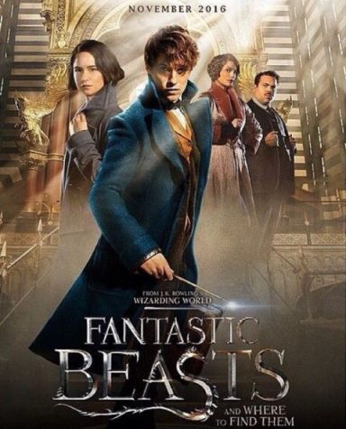 """""""Fantastic Beasts"""" Lives Up to Potterhead Expectations"""