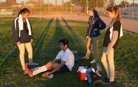 Venice High's Sports Medicine covers 23 teams every year