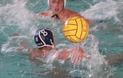 Boys water polo loses to Granada Hills