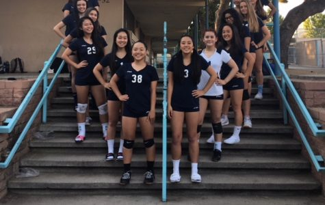 Girls Volleyball Gets Knocked Out Of Playoffs