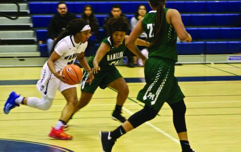 Girls Basketball Team Season Closes with Playoffs