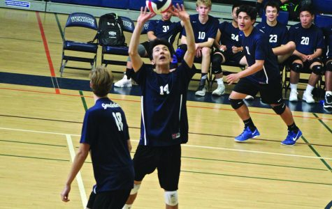 Boys Volleyball Season Commences