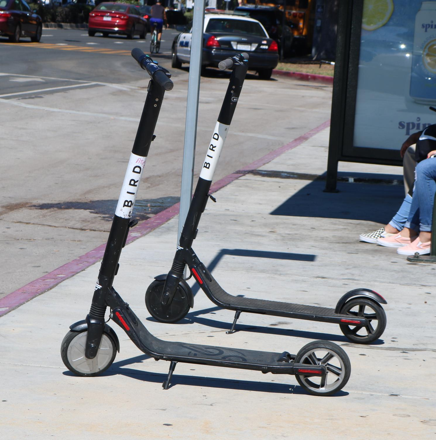 BIRD scooters parked in front of campus.