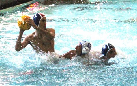 Boys Water Polo Season in Review