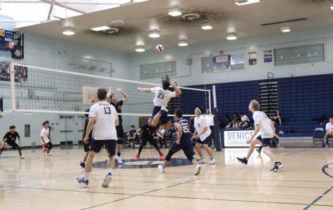 Boys Volleyball Starts Season