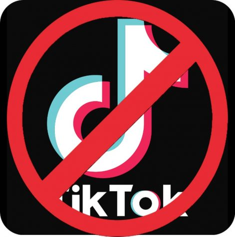 Uncovering the TikTok Algorithm and the app