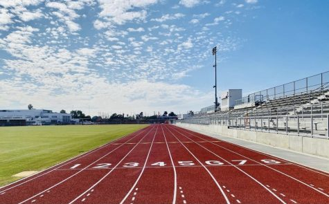 Venice to Hold Voluntary Sports Workouts and Potential Outdoor Competition