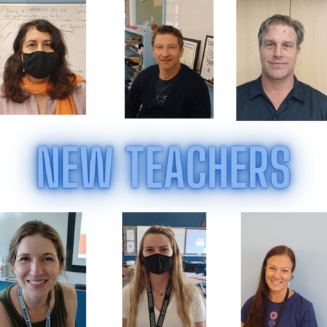New Faces of Education: Meet the incoming teachers of Venice High