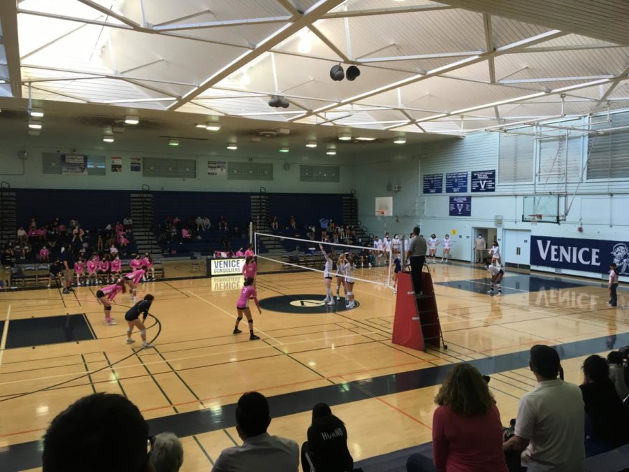 Girls' Volleyball Defeat Palisades On Pink Out Day